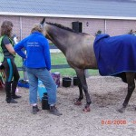 Hendriena and Ghengis Khan at a ride vet check