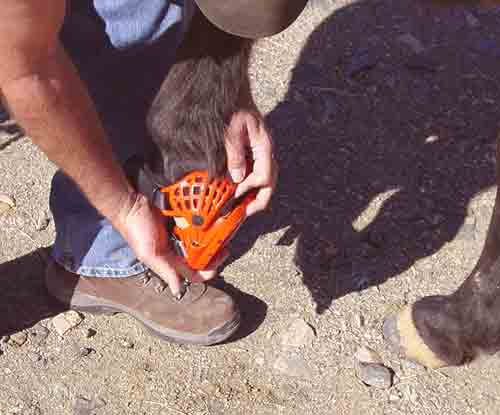 Renegade Hoof Boots How To