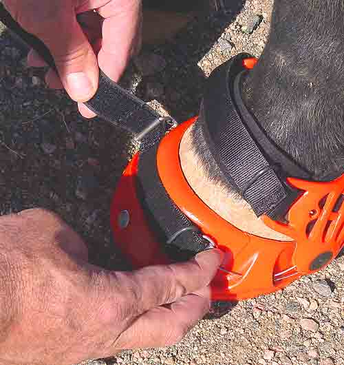 Renegade Hoof Boots Strap Tension