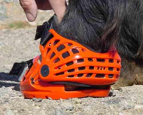 Renegade Hoof Boots Heel Bulb
