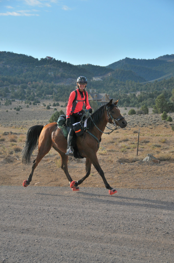 Horse Boots Trail
