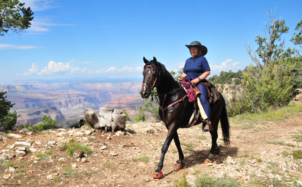 Grand Canyon Horse Boots