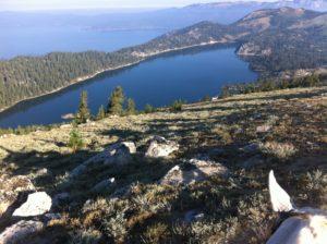 Hoof Boots Lake